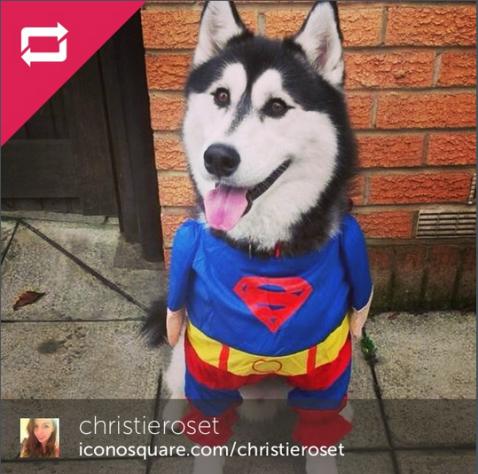 instagram winner