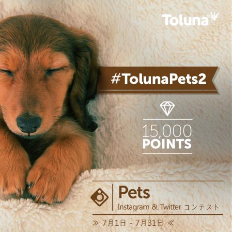 TolunaPets2_JP